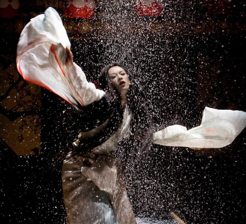 'Memoirs of a Geisha' Zi Zian