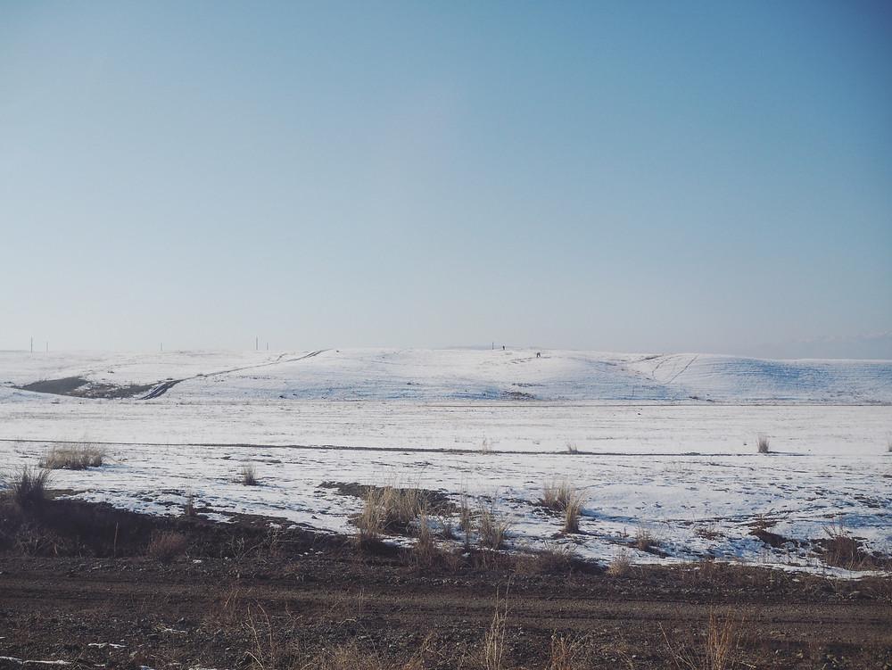窗外的风景由干草原变成了白雪地。