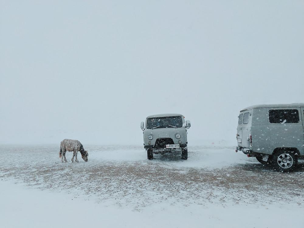 蒙古突如其来的暴风雪。