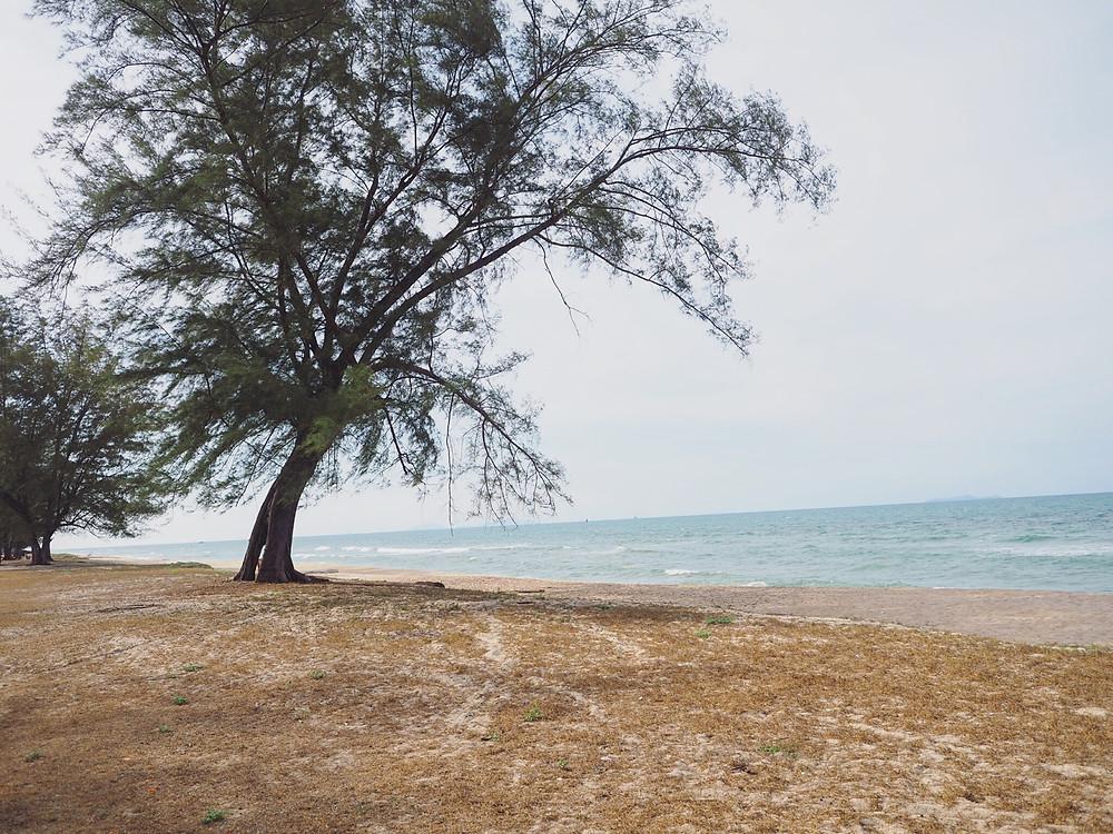 Pantai Penarik