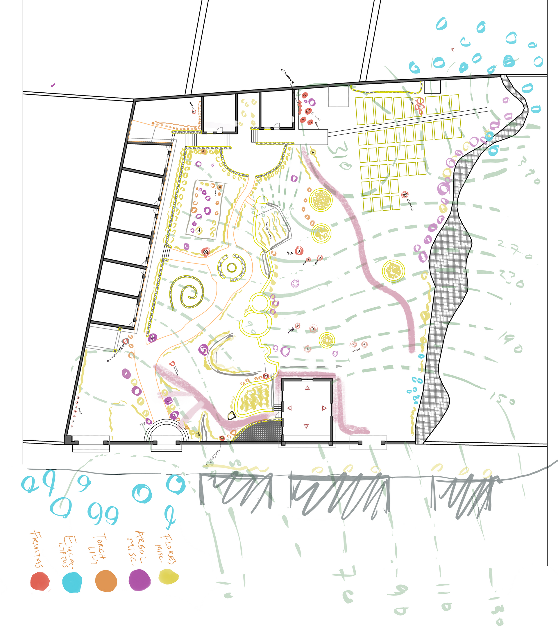 Site - Flora - Topography Survey