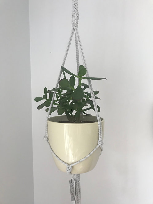 Single Plant Hanger with Wood Attachment and Braid