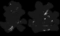 new_kyokushin_logo.png