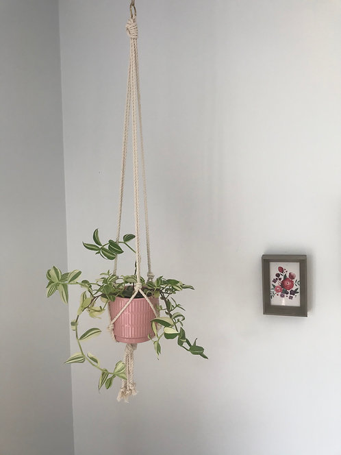 Single Plant Hanger with Brass Attachment