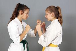 toshi karate 5.jpg