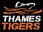 TT Logo cropped.jpg
