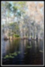 lake F.jpg