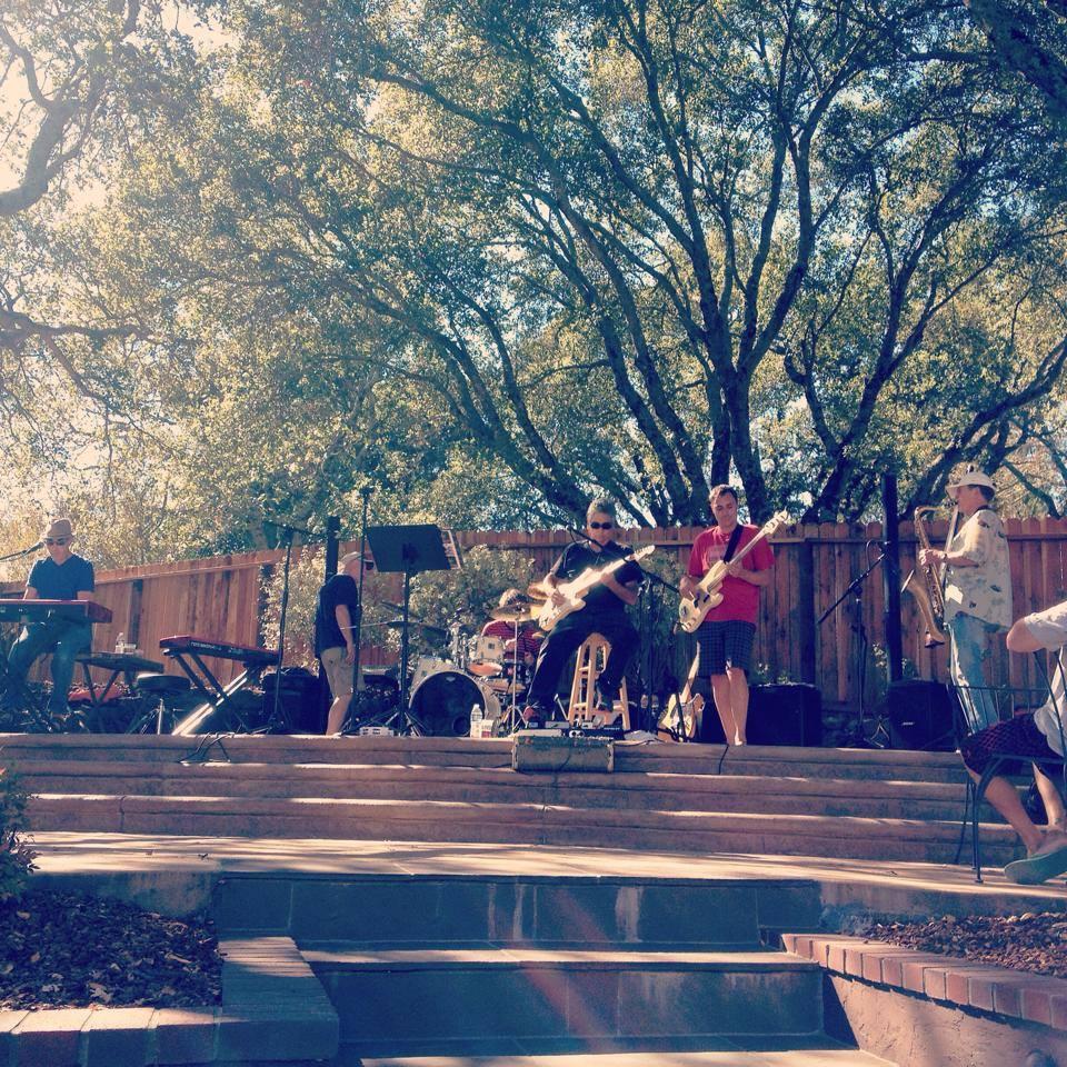 Backyard 2014.jpg