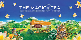 BengalSpice banner-page-001.jpg