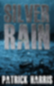 Silver Rain Cover.jpg