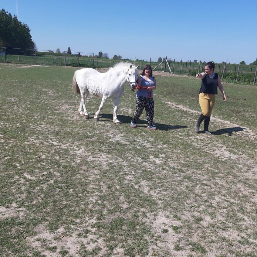 lindsay wandelen paard