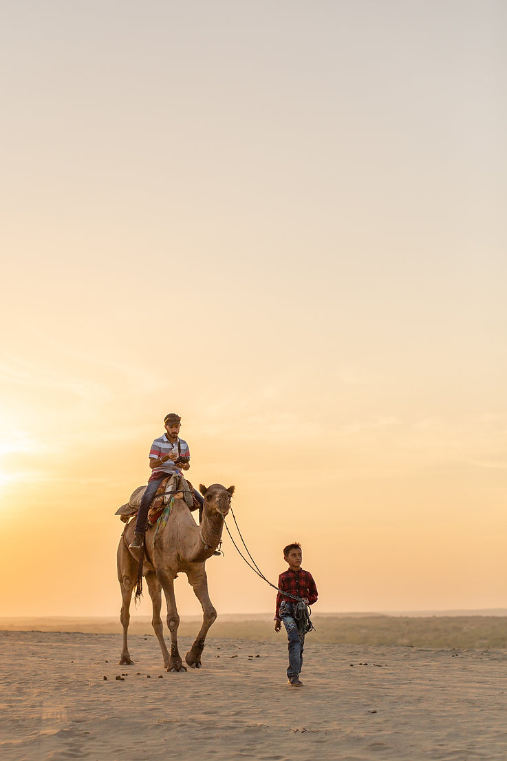 Camel safari at sunset golden hour in Jaisalmer desert India