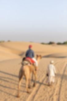 Camel safari at sunset golden hour in Jaisalmer desert India
