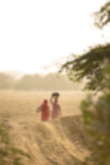 Women walking to collect water in Jaisalmer desert sunset
