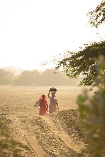 Women walking to collect water in Jaisalmer desert sunset