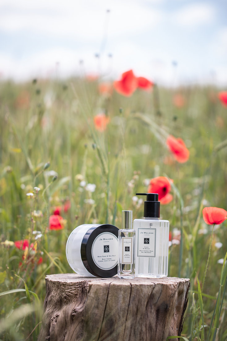 Poppy and Barley cologne in poppy field still life photographer