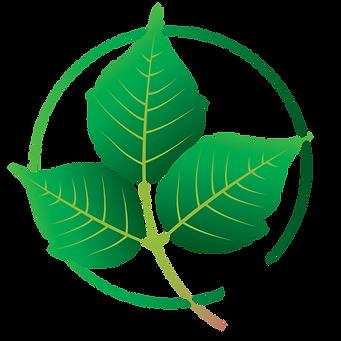 Aitex Logo Design_Poisen Ivy.png