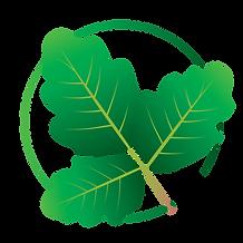 Aitex Logo Design_Poison Oak.png