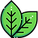 coca-leaves.png