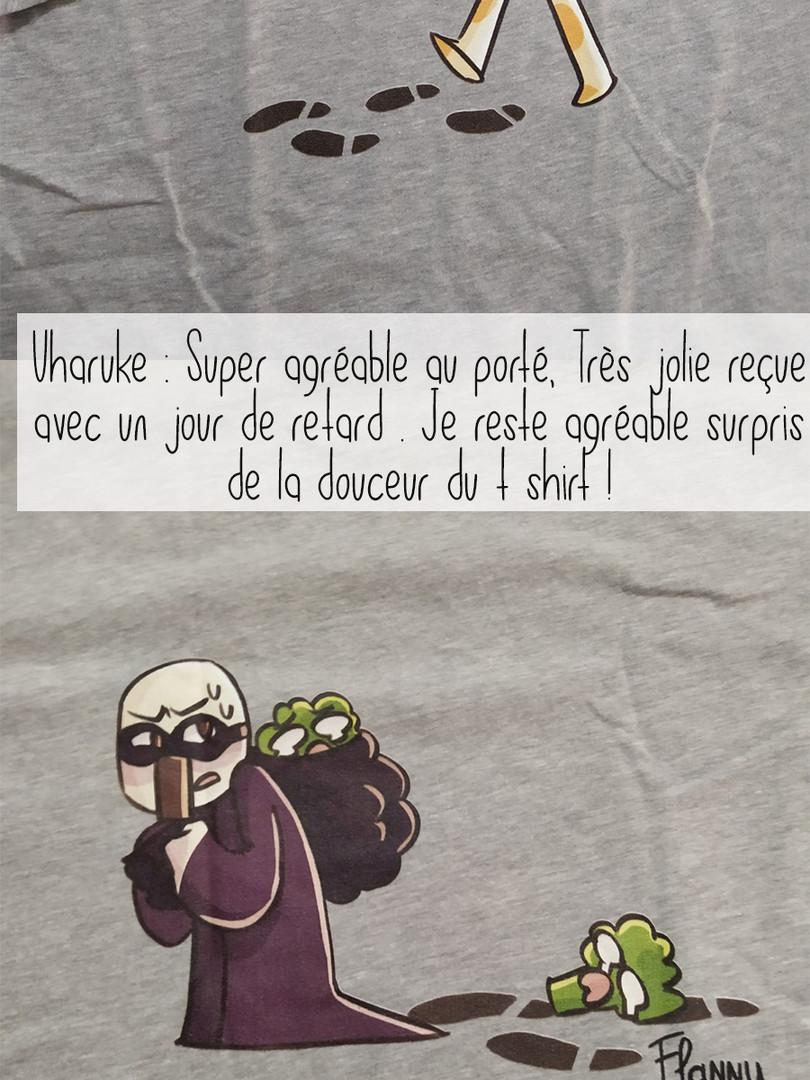T-shirt Flanny gris Détective Flannou