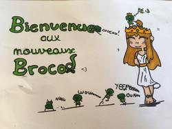 bienvenue les brocolis