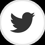 iconfinder_online_social_media_twitter_7