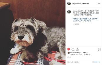 ohoyoshiko1.jpg