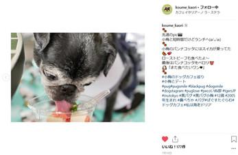 koume_kaori5.jpg