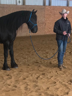Natrual clinic how to help your farrier