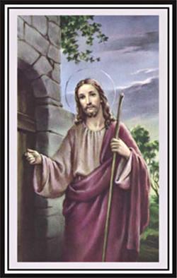 Pax Card 10