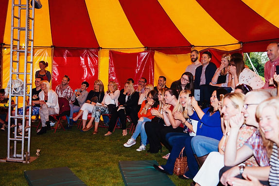 guests watching circus performance