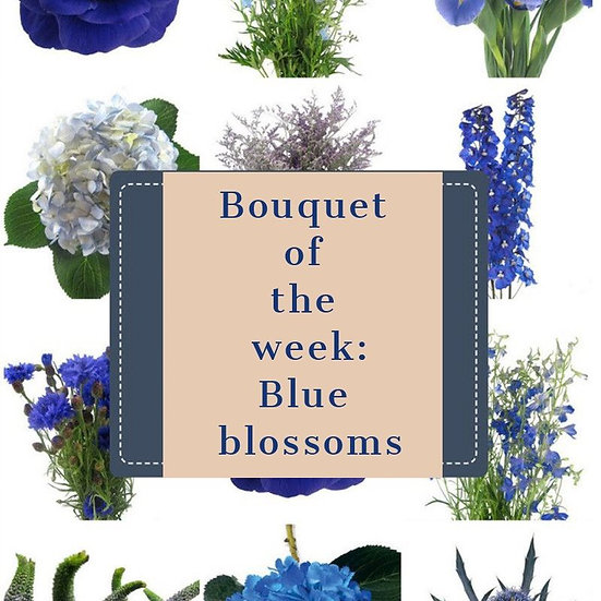 Bouquet of the week - Blue blossoms
