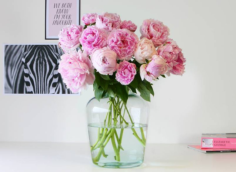 Flower of the month: Peonies (15 pcs)