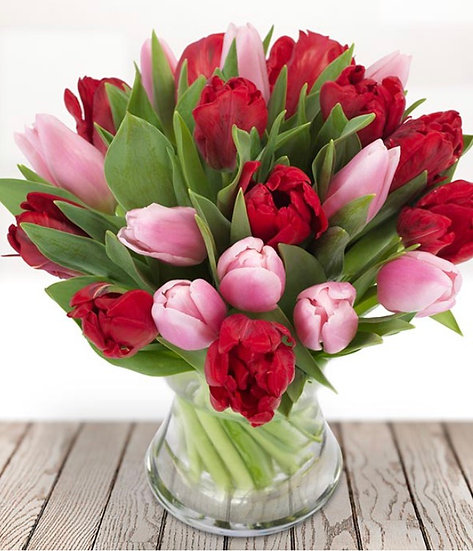 Flower of the month - Tulips
