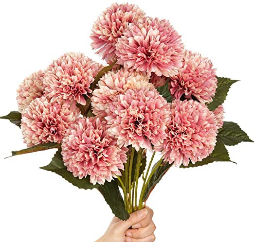 Flower of the month: Chrysanthemums