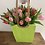 Thumbnail: Flower of the month - Tulips