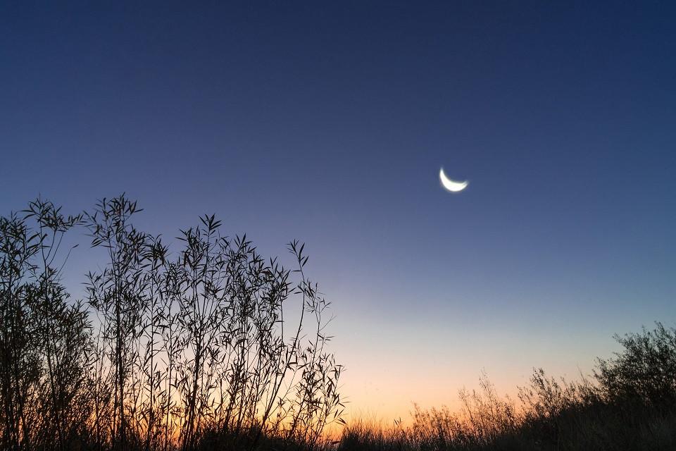 ירח רגע לפני זריחה