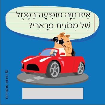 איור של שימי החתול יושב במכונית אדומה ומבריקה
