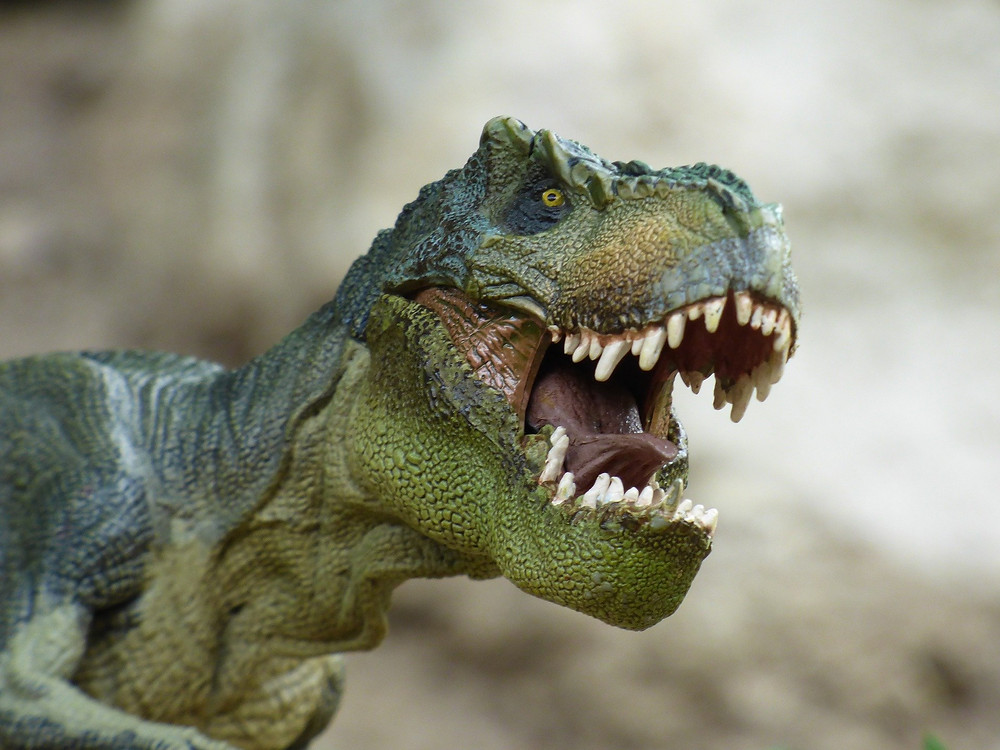 דינוזאור חושף שיניים