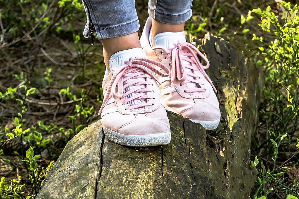 הליכה בשיווי משקל על בול עץ