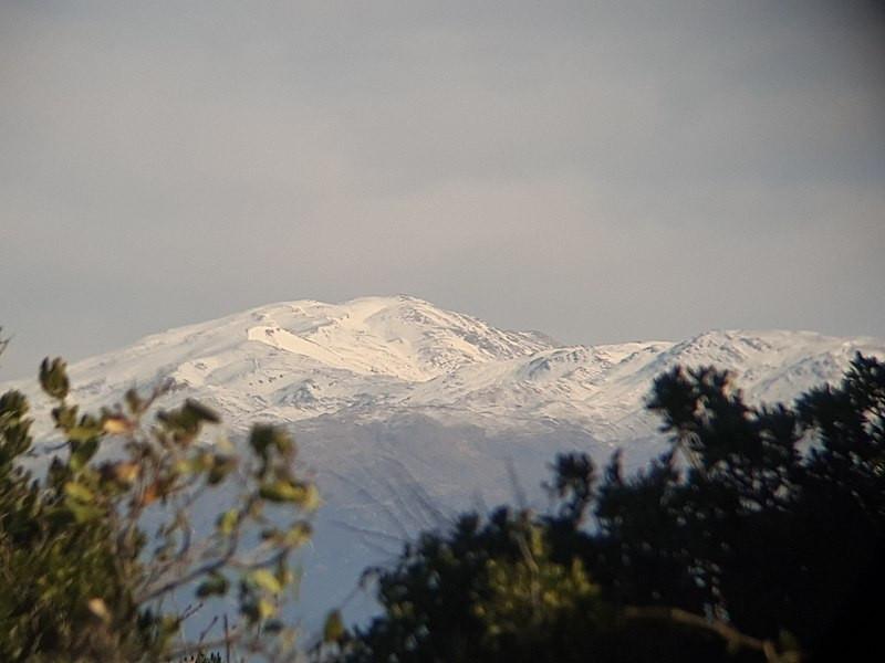 נוף הר החרמון