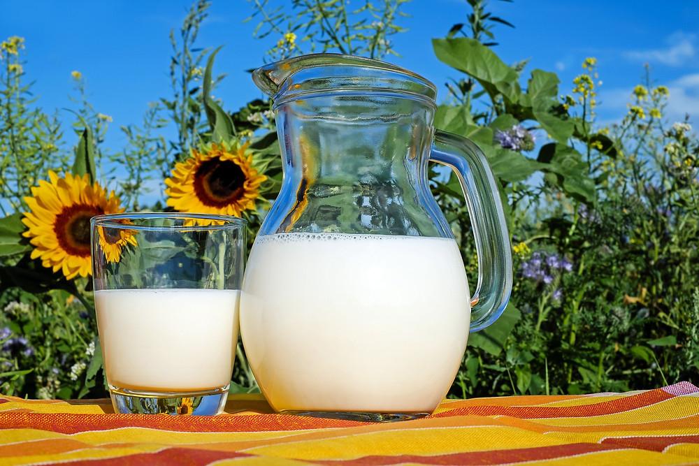 כוס וקנקן חלב על רקע שדה פרחים
