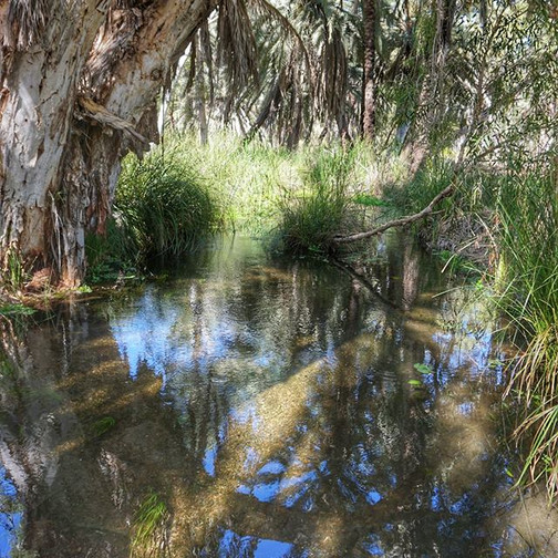 Millstream-Chichester National Park