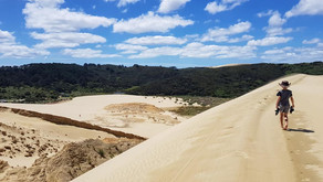 TE PAKI DUNES + 90 MILE BEACH