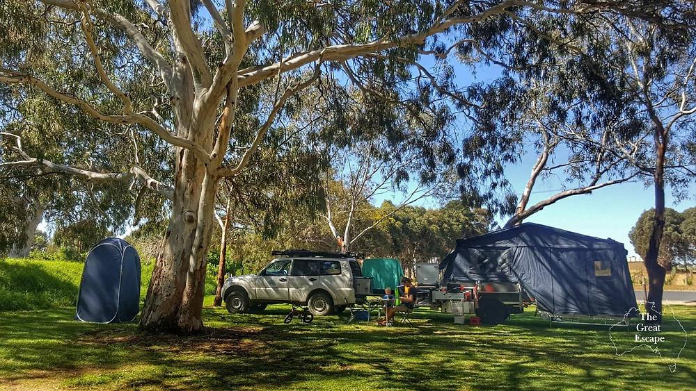 frank potts reserve free camp