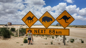 OUR TIPS FOR CROSSING THE NULLARBOR
