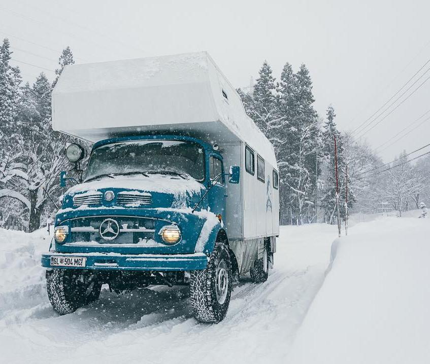 Akela in the snow