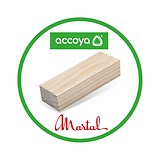 Accoya Logo Social Media BeLux.png