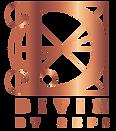 Divin_logo_Juist-06.png