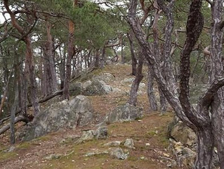 Naturgang Göttweiger Hals und Göttweiger Berg